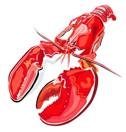 crayfish: Lobster