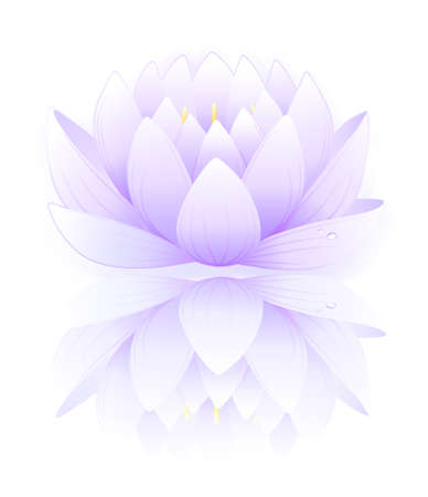Blue lotus Stock Vector - 11357643