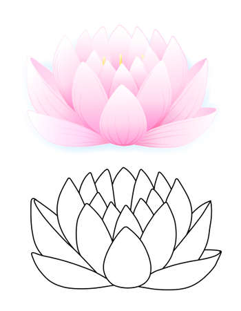Pink lotus  Stock Vector - 11357641