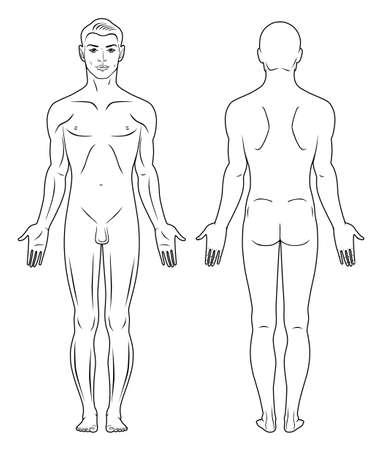 nude mann: In voller L�nge vorne, hinten eines stehenden nackten Mann sehen