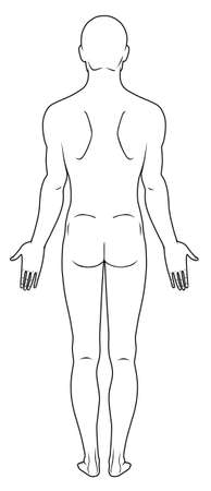 naked male: Full length back view of a standing naked man Illustration