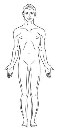 nude male: Full length front view of a standing naked man
