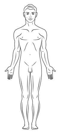nude mann: In voller L�nge Vorderansicht einer stehenden nackten Mann