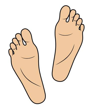 barefoot walking: Two foots isolated on white  Illustration