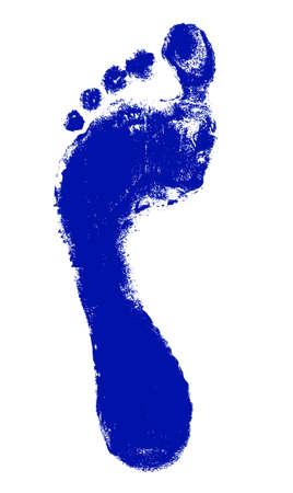 foot print: Empreinte isol� sur blanc Illustration