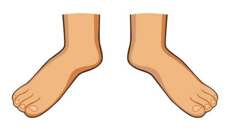 man feet: Two feet Illustration