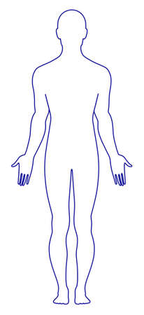 Naked standing man Vector