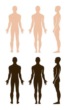 Profil pleine longueur, avant, vue arrière d'un homme debout, nu. Vous pouvez utiliser cette image pour la conception de la mode et etc