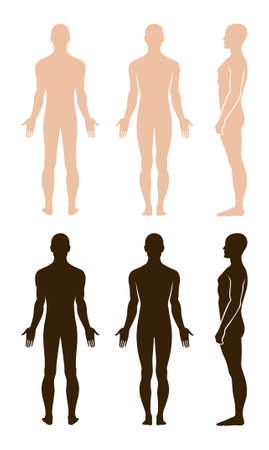 nude male body: Full length profile, front, back view of a standing naked man. You can use this image for fashion design and etc. Illustration