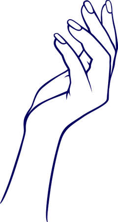 Woman hands Vector