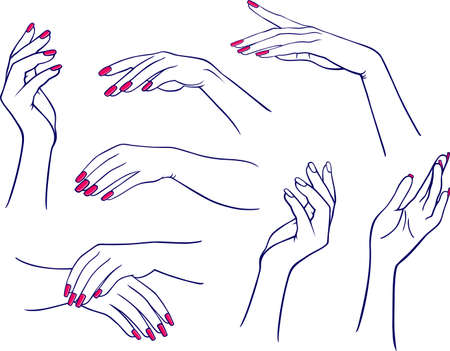 finger nails: Woman hands