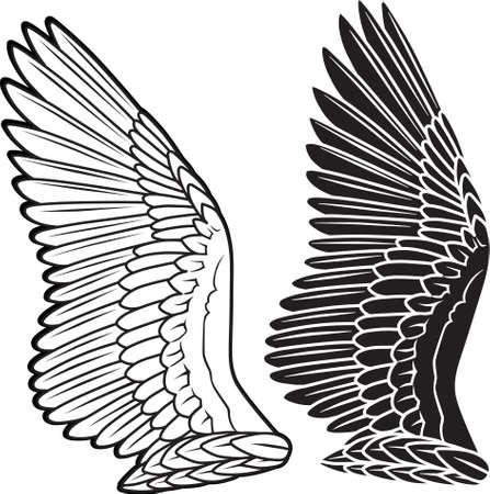 alas de angel: Las alas de la paloma Vectores
