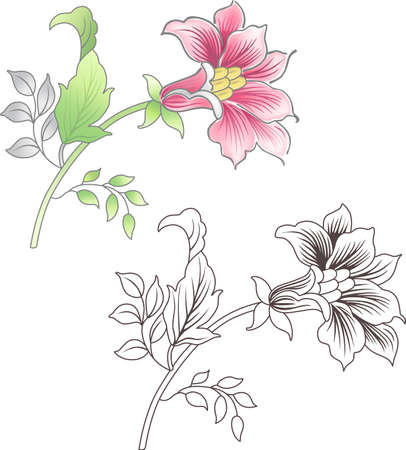Pink and outlined flower isolated on background (vector)  Illustration