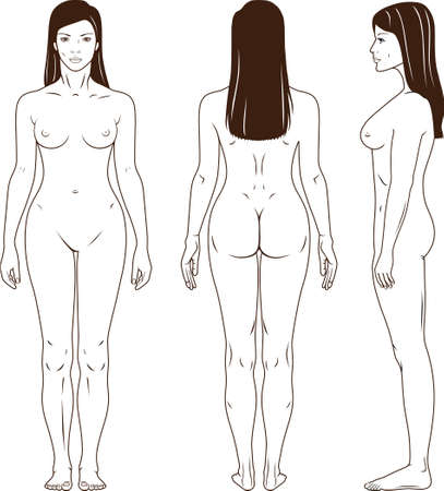 donna completamente nuda: Nudo in piedi vettore donna