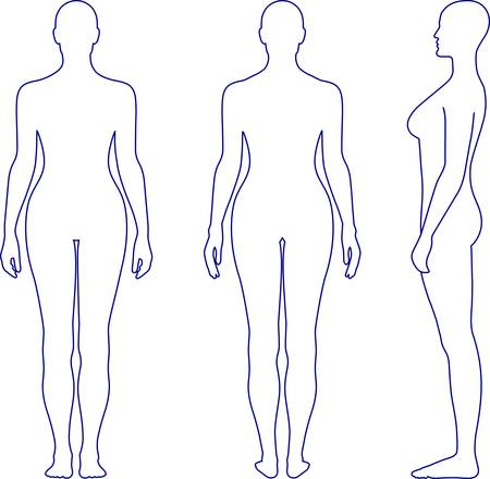 Full length front, back, side view of a standing naked woman. You can use this image for fashion design and etc.