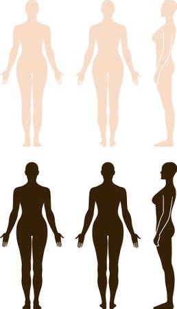Volledige lengte voor, achter, zijaanzicht van een staande naakte vrouw. U kunt deze afbeelding voor in fashion design en etc.