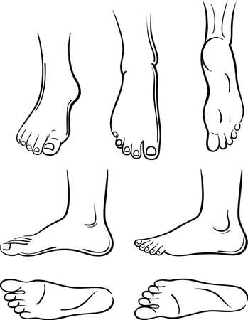 anatomy naked woman: Seven black-outlined man feet isolated on white background.  You can use this image for fashion design and etc.