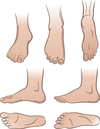 Seven outlined colored man feet isolated on white background.  You can use this image for fashion design and etc. Illustration