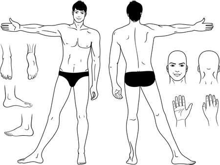 De volledige lengte (voor & achter) uitzicht op een staande man Stock Illustratie