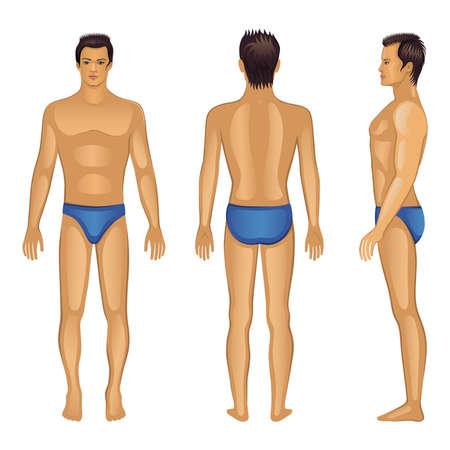 Illustrazione vettoriale di tutta la lunghezza anteriore, posteriore, laterale uomo nudo isolato su bianco Archivio Fotografico - 26024818