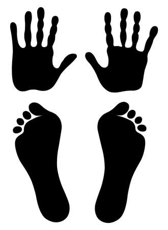 flatfoot: illustration old man hand and foot prints isolated on white.  Illustration