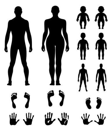 Full length front, back human silhouette vector illustration, isolated on white Illustration