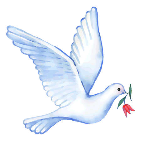 Watercolor soaring dove with flower, vector illustration isolated on background
