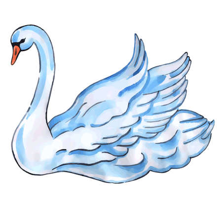Swan with lift wings isolated on white background,  watercolor vector illustration