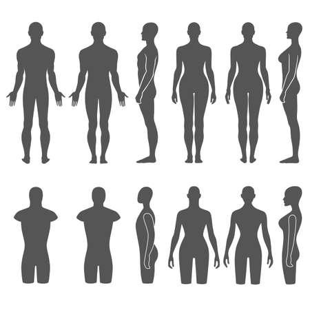 mujer desnuda de espalda: Hombre y mujer maniquí descrito torso silueta (frontal, posterior, vista lateral). Ilustración vectorial aislados en fondo blanco. Usted puede utilizar esta imagen para el diseño de moda, etc