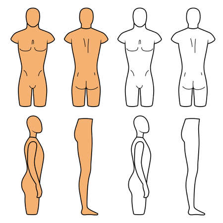 naked male body: Male mannequin outlined torso (front, back view). Vector illustration isolated on white background. You can use this image for fashion design and etc.