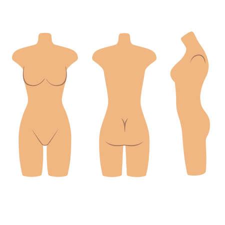 mujer desnuda de espalda: Mujer maniquí torso estilo plano (frontal, posterior, vista lateral). Ilustración vectorial aislados en fondo blanco. Usted puede utilizar esta imagen para el diseño de moda, etc