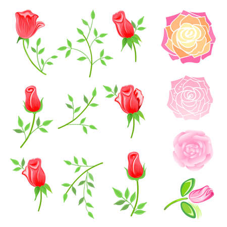 romance bed: Roses & twig with leaves set isolated on white background, vector illustration