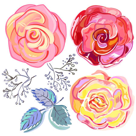duration: Peach pink red roses set isolated on light background, vector illustration