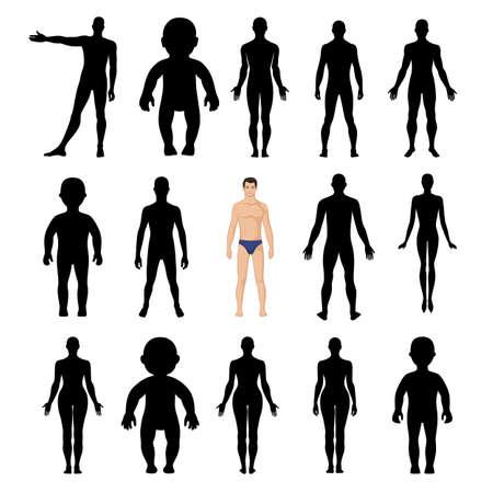 cuerpos desnudos: siluetas humanas plantilla de la figura (frontal y posterior), ilustraci�n vectorial aislados en fondo blanco