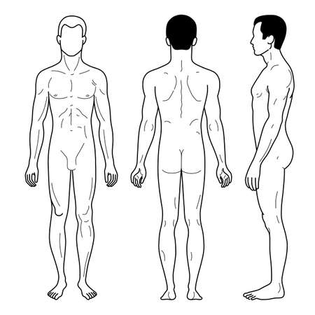 nude man: Fashion man outlined template full length figure silhouette (front, side & back), vector illustration isolated on white background. Illustration