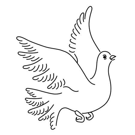 angelic: Soaring dove, vector illustration isolated on white background