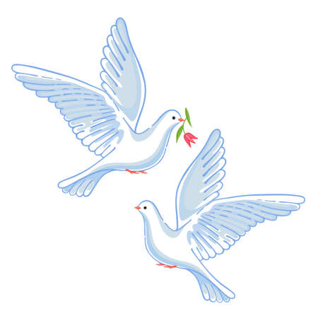 soaring: Soaring dove with flower, vector illustration isolated on background Illustration