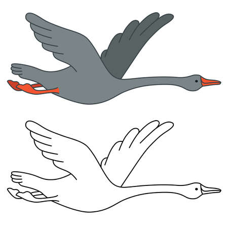 soaring: Soaring goose, vector illustration isolated on white background Illustration