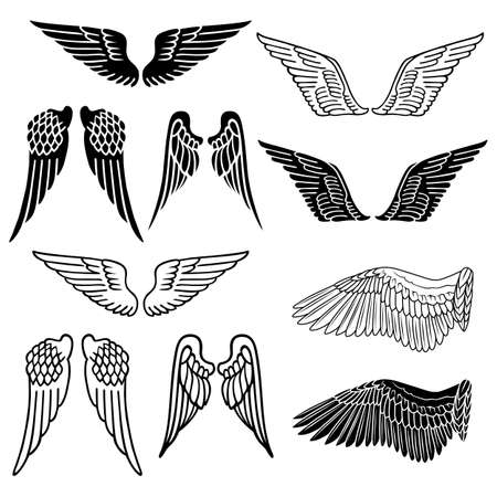 Wings set linear silhouette isolated on white background, vector illustration