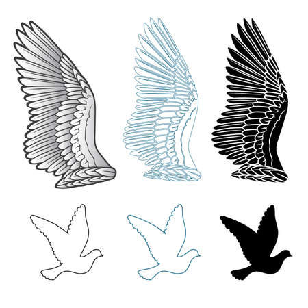 animal angelic: Pigeon wings and dove linear silhouette isolated on white background, vector illustration