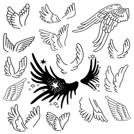 animal angelic: Wings set linear silhouette isolated on background, vector illustration