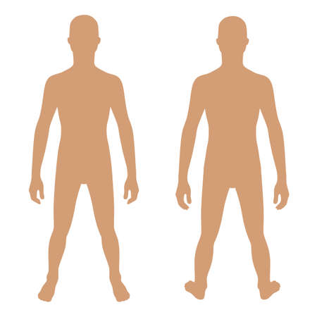 proportions of man: Fashion teenagers solid template figure silhouette (front & back view), vector illustration isolated on white background Illustration