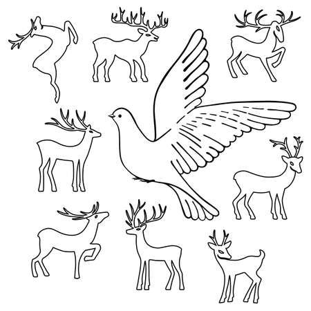 white tail deer: Soaring dove & deers, vector illustration isolated on white background