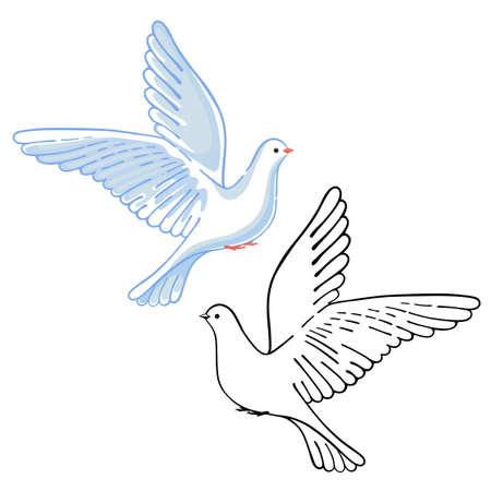 tremble: Soaring dove (colored & black), vector illustration isolated on white background Illustration