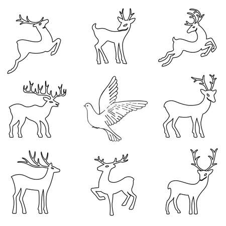 venison: Soaring dove & deers, vector illustration isolated on white background
