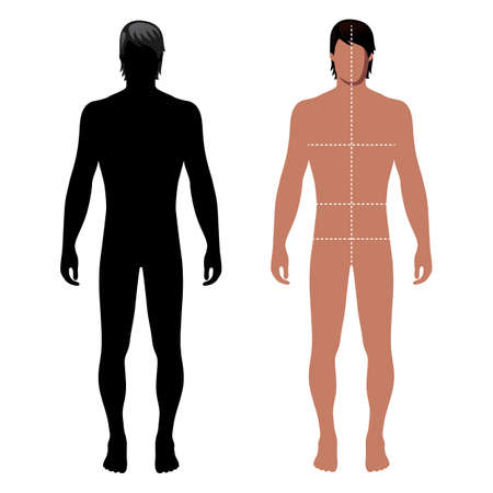 doppelganger: Fashion man full length outlined template figure silhouette with marked bodys sizes lines (front view), vector illustration isolated on white background Illustration