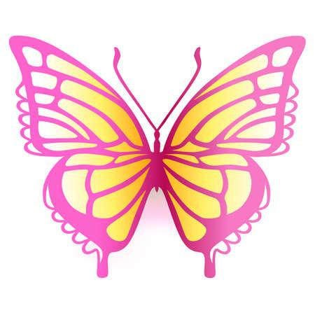 Colorata farfalla logo, illustrazione vettoriale isolato su sfondo