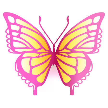 Colored butterfly logo, vector illustration isolated on background Illustration