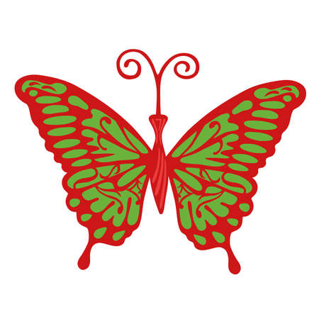 antennae: Colored butterfly, vector illustration isolated on background