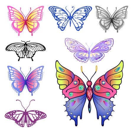 Colored butterfly set, vector illustration isolated on background